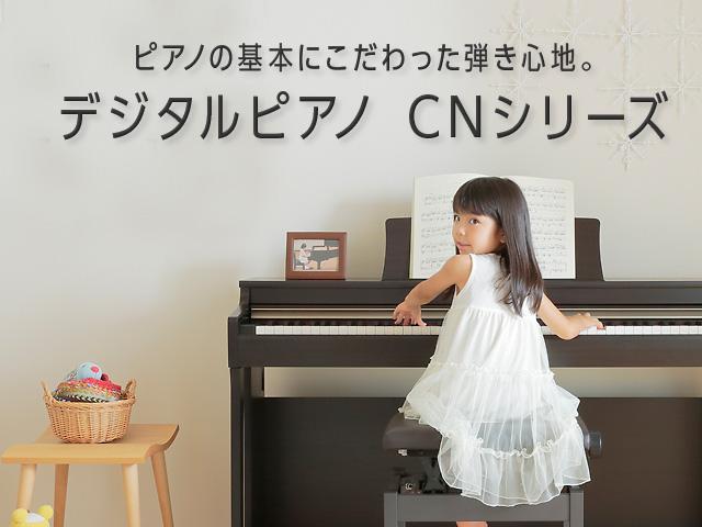 CNシリーズ
