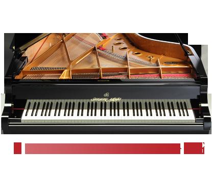 グランドピアノの感動がよみがえる<br /> 88鍵ステレオサンプリングピアノ音源