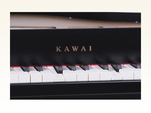 プレーヤーミニピアノ 1171
