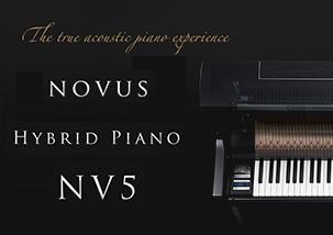 NV5プロモーション
